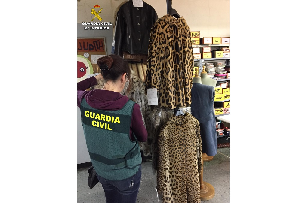 Fashion items derived from protected big cat species detected online and seized by Spain's Guardia Civil. Top: jaguar (Panthera onca) - Bottom: leopard (Panthera pardus) - Back: lynx