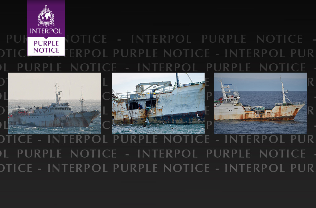Earlier on in the investigation, INTERPOL had issued a Purple Notice (PN) against the vessel. PN's are an important tool for fisheries enforcement as they allow police worldwide to share information about the vessel modus operandi and collect more information on its suspected illegal fishing activities.