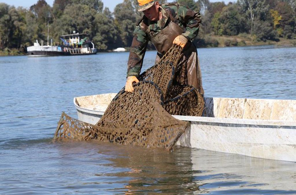 The operation revealed widespread illegal marine pollution activities, including here in Bosnia Herzegovina where officers remove an illegal fishing net from local waters