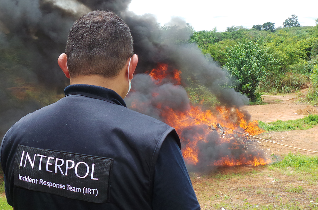 The drugs haul was destroyed by Guinea Bissau's national authorities.