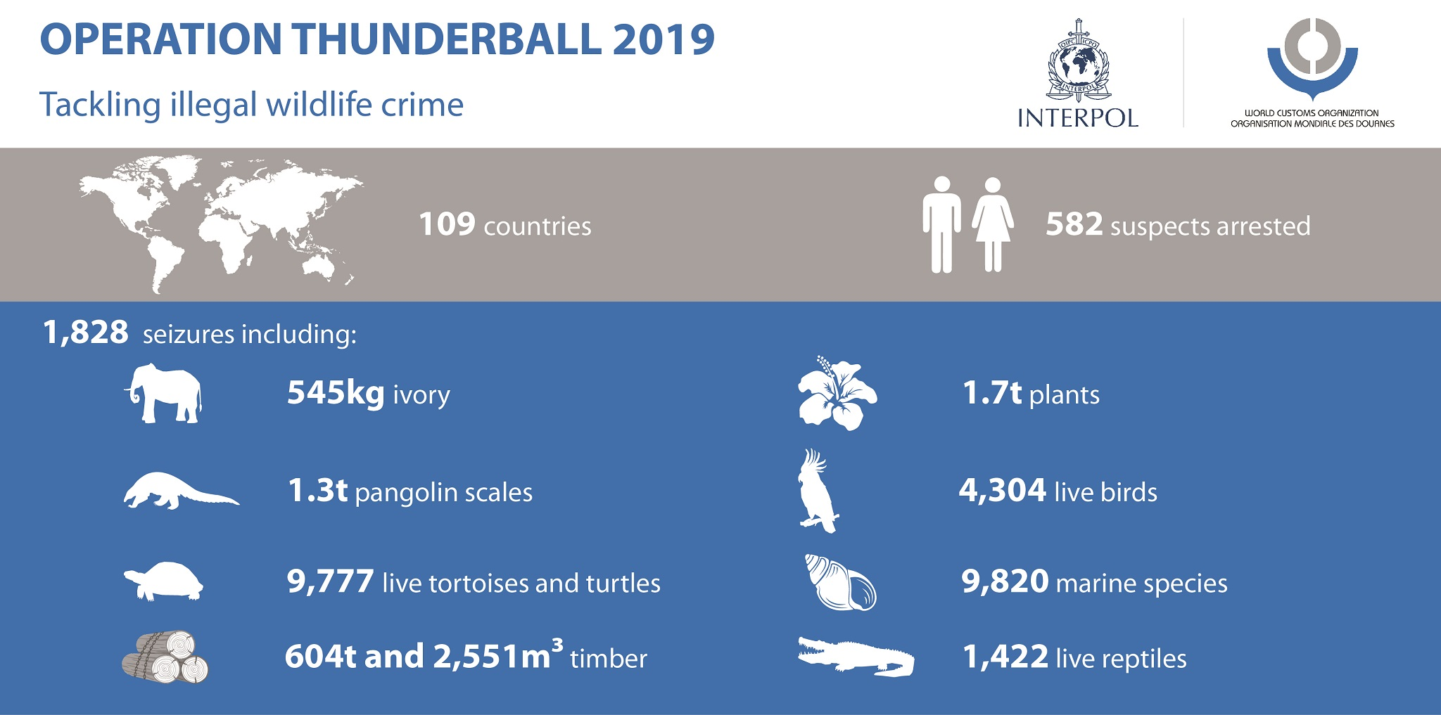 INTERPOL-WCO Operation Thunderball results