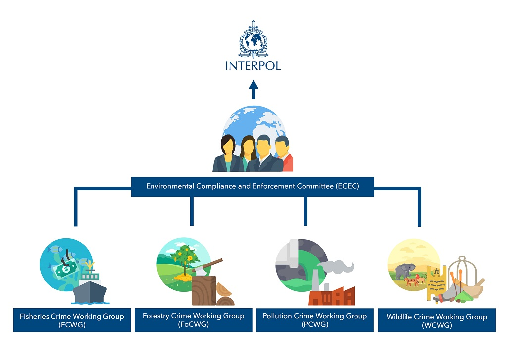 INTERPOL Environmental Compliance Enforcement Committee