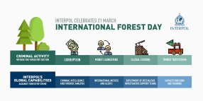 International Forest Day 2018