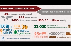 Operation thunderbird 2017 - Update