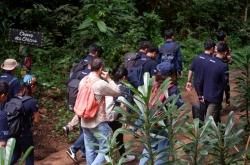 Participants visited Mefou National Park's Primate Sanctuary.